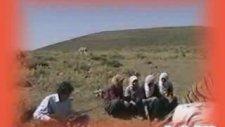 Musa Eroğlu - Felek Çakmağını Üstüme Çaktı