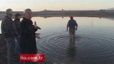 Balıkesir'de Yayın Balıkları Telef Oldu