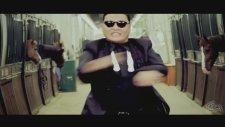 Gangnam Style & The Fox & Harlem Shake