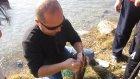 Adana Balık Avı Uğur Ülker