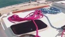 Smart Sailing Yelken Okulu