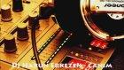 Dj Harun Erkezen - Canım Dediklerim (Remix)