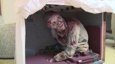 Walking Dead Oyuncusuna Zombi Şakası!