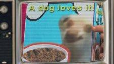 Köpeğe Çin İşkencesi