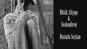 Mustafa Seykan - Kış Masalı