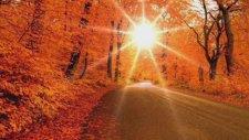 Aynur Haşhaş - Bağlandı Yollarım Kaldım Çaresiz