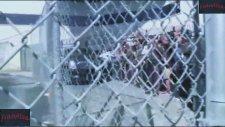 Justin Bieber Miami Hapishanesinden Çıktı