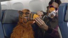 80'lerde Uçakla Yolculuk Yapmak