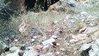 Gederet (Dereiçi) Kızılkaya Mağarası- Bozkır-Konya