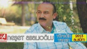 Neşet Abalıoğlu - Ankarada Kaldım