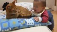 Sevimli Bebek Kedinin Kuyruğunu Isırırsa