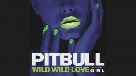 Pitbull - Wild Wild Love
