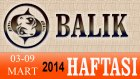 BALIK Burcu HAFTALIK (03-09 Mart 2014) Astrolog DEMET BALTACI, Bilinç Okulu, Astroloji, Burçlar