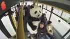Hayrettin Pandayla Dolmuşa Binerse