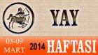 YAY Burcu HAFTALIK (03-09 Mart 2014) Astrolog DEMET BALTACI, Bilinç Okulu, Astroloji, Burçlar