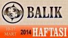BALIK Bu HAFTA Burç ve Astroloji Yorumu(10-16 Mart 2014) Astrolog DEMET BALTACI, Bilinç Okulu