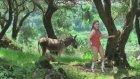 Deli Mayolu Kız - Entarisi Dım Dım Yar
