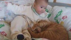 Bebek ve Kedi Eşittir Mutluluk