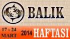 BALIK Bu HAFTA Burç ve Astroloji Yorumu(17-24 Mart 2014) Astrolog DEMET BALTACI, Bilinç Okulu