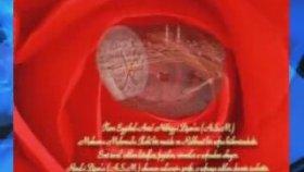 Mustafa Özcan Güneşdoğdu - Gel Hele