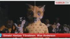 Simetri Hastası Yönetmen: Was Anderson