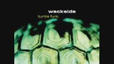 Wackside - Turtle Funk (Original Mix) (1998)