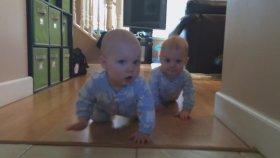 Sevimli İkizlerin Kıyasıya Yarışı