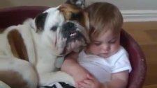 En Güzel Bebek Ve Köpek Videoları