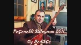Peçenekli Süleyman -Oy Dedikçe