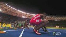 Usain Bolt, Çita'ya Karşı