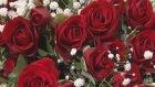 Çiçek Sepeti 99 Adet Kırmızı Gül Buketi