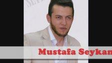 Mustafa Seykan - Çiftetelli 2014