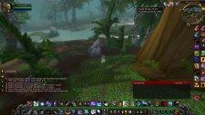 Molten Wow Hunter Spirit Beast Gondria Growl Bug !!