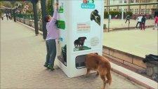 Sokak Hayvanlarını Bedava Doyuran Sistem