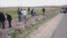 Aşlama Köyü Fidan Kampanyası