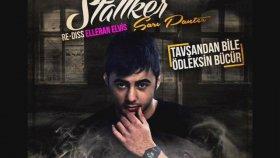 Stallker - Sarı Panter