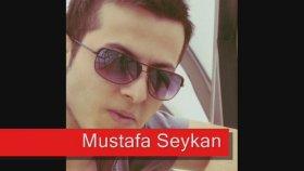 Mustafa Seykan - Yalnızım Dostlarım