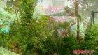 Aegean Garden - Bodrum - Etstur