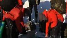 Kuzey Kutbu'nda Yüzen Buzula Atladılar