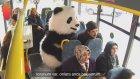 Minibüste Panda Gören Masum Teyzeler