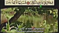 Ahmet el Acemi Yasin Suresi