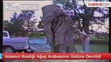 Kestiği Ağaç, Arabasının Üstüne Devrildi
