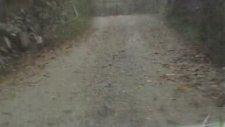 Ayancık Gürpınar Köyünde Yağmurda Yolculuk