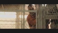 5 Jahre Leben (2013) Fragman
