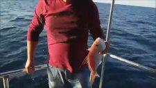 Kuşadası Balık Avı