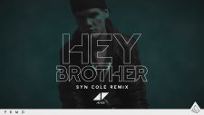 Avicii - Hey Brother (Syn Cole Remix)