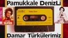 Tülay Özer - Süper Türkülerimiz