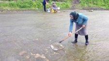 Balık Tutmak Hiç Bu Kadar Kolay Olmamıştı