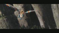 How To Train Your Dragon 2 - Ejderha Yarışı Sahnesi