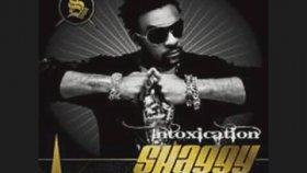 Shaggy - Mister Bombastic